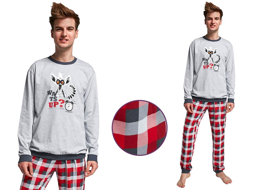 Piżama męska Lemur, Cornette
